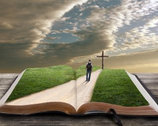 Biblical Journey